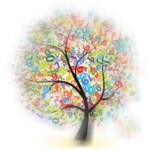 arbres de nombres