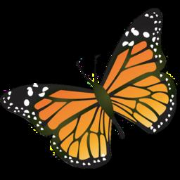 papillon numerologie